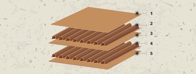 структура на лист от велпапе
